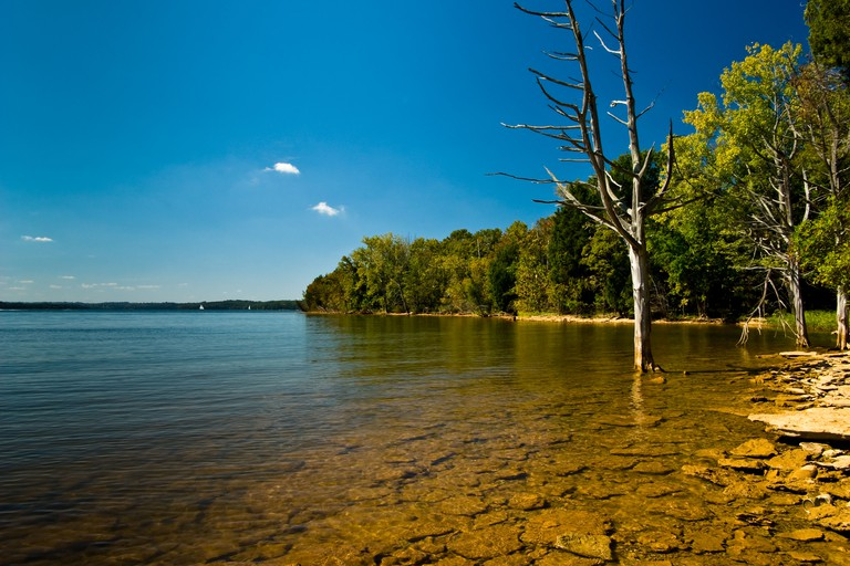 Shoreline of Percy Priest Lake in Nashville TN