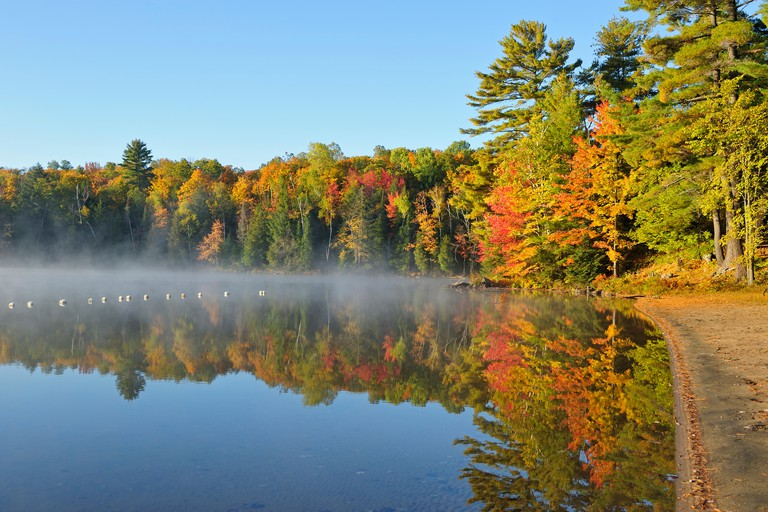 Sandy beach and  forest in autumn foliage reflected in Silent Lake Silent Lake Provincial Park Ontario Canada
