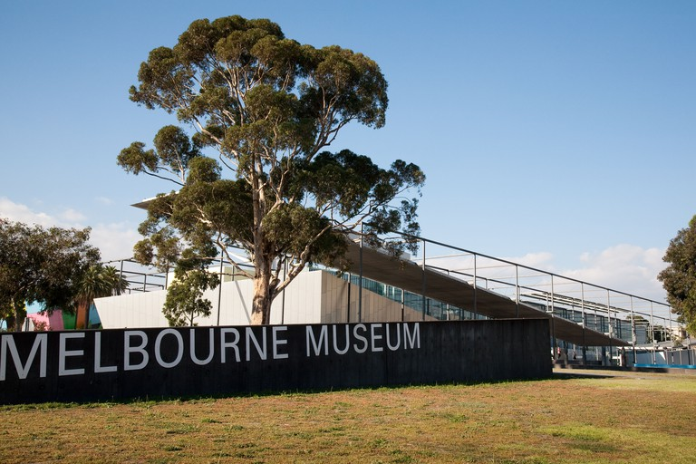 The Melbourne Museum, Australia, featuring early morning light and a gum tree.