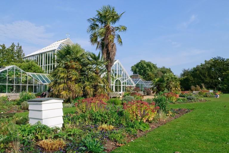 Glasshouses at the Cambridge University Botanic Garden