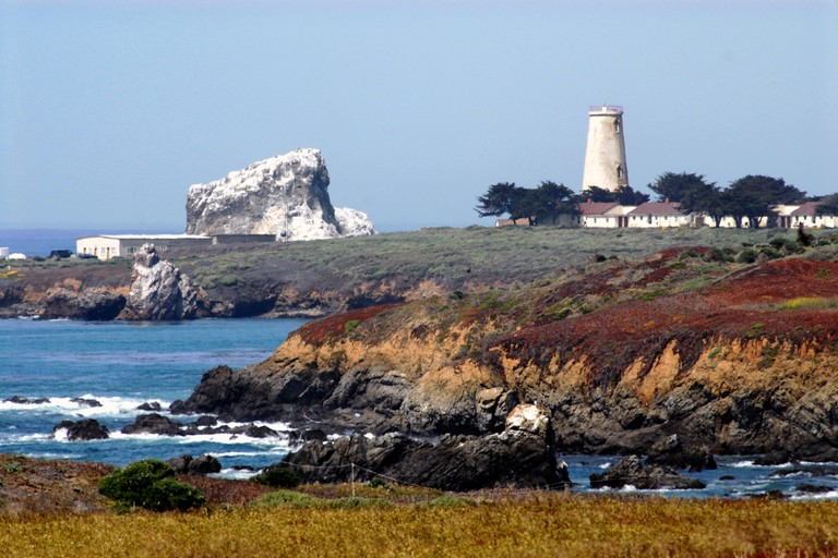 The beautifully colorful and rugged coastline of California, featuring the Piedras Blancas Lighthouse near Cambria.