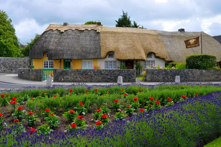 Cottages at Main Street, Adare, County Limerick, Ireland / reed-roofed cottage