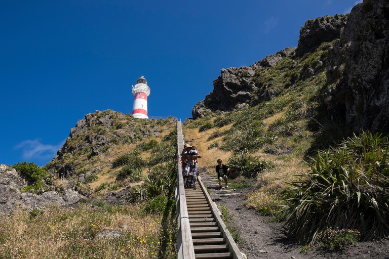 Cape Palliser lighthouse standing atop a cliff up 252 steps, New Zealand.