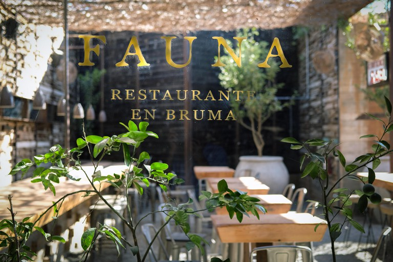 Fauna Restaurant In Valle De Guadalupe,Mexico