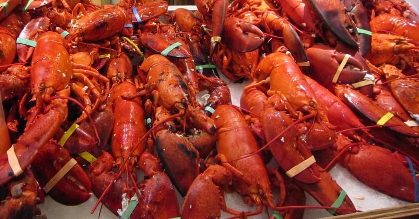 Pile Of Lobsters Chloe Media Flickr