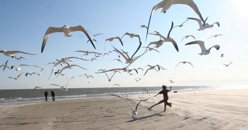 Galveston | © Ed Schipul/Flickr