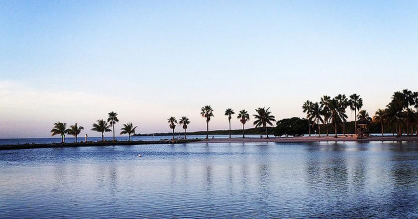 Mathewson Hammock Park, Coral Gables Miami © Elizabeth Gilbert/flickr