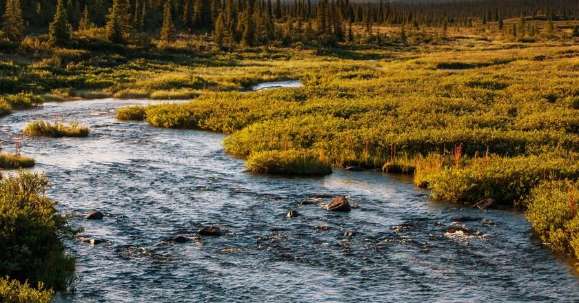 Alaska © Galyna Andrushko/Shutterstock