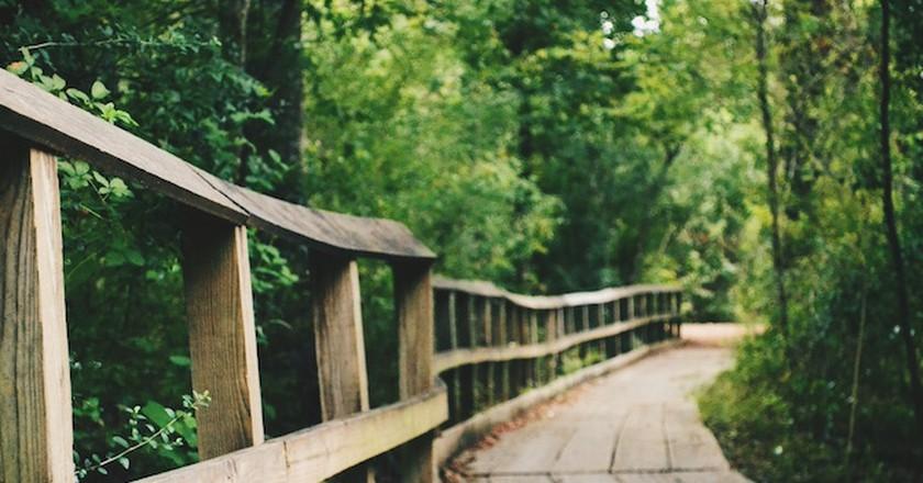 Arboretum Trail l © Adam Yang