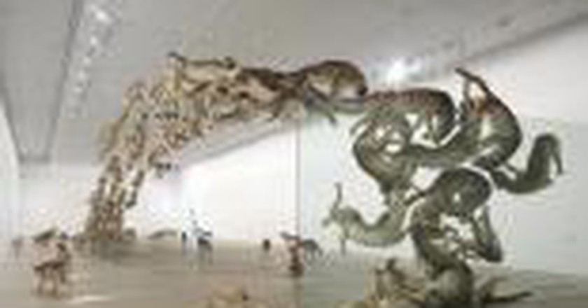 Cai Guo-Qiang's Mind-Blowing Realism In Queensland, Australia