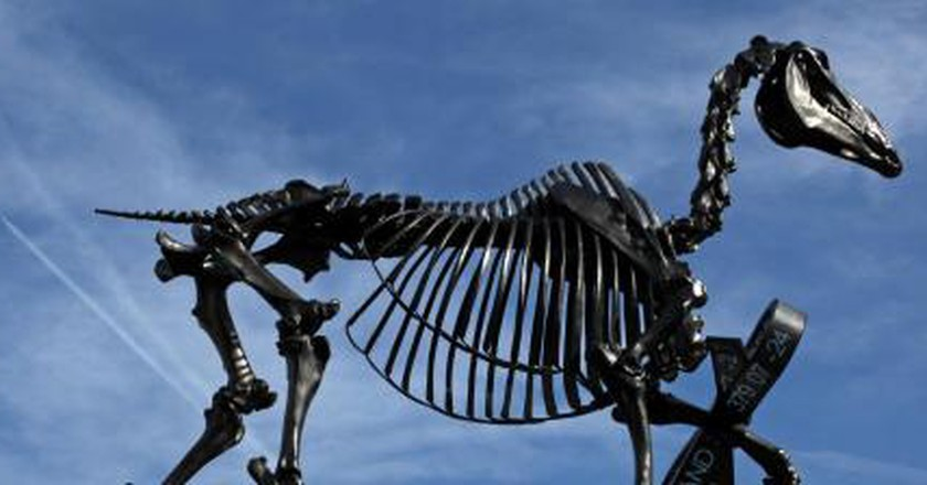 What Is Your Favourite Of Trafalgar Square's Fourth Plinth Sculptures?