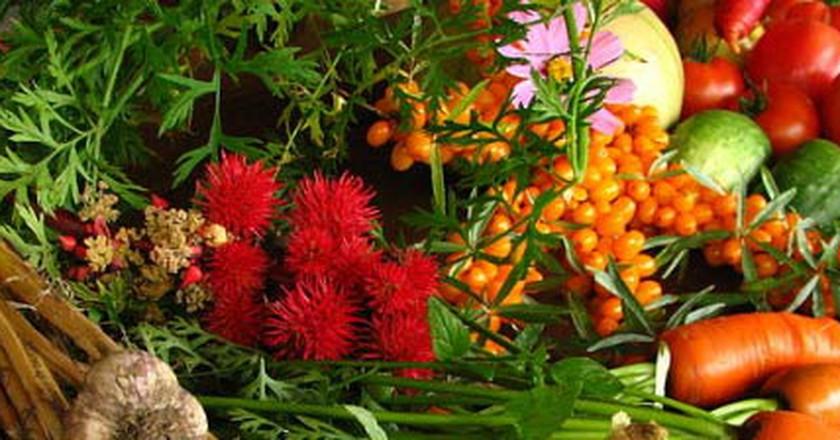 The Top Tel Aviv Food Trends Of 2015