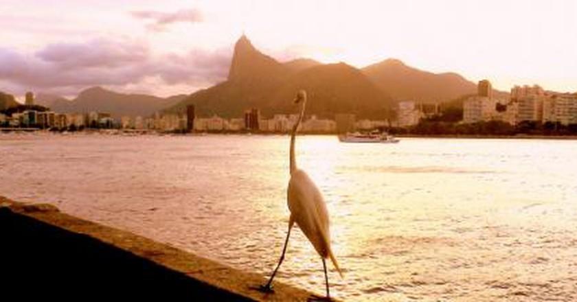 The 10 Best Restaurants In Urca, Rio De Janeiro, Brazil