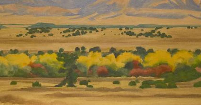 Where To See Georgia O'Keeffe's Art