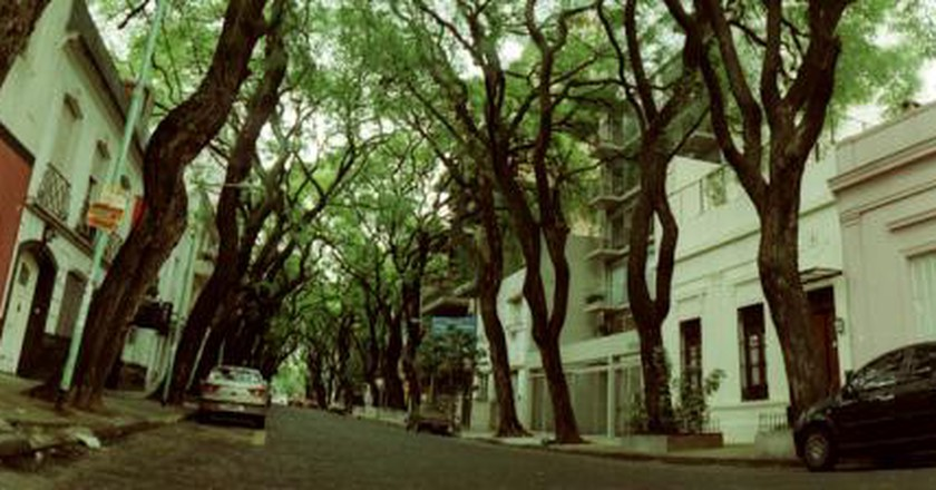 The Best Brunch Spots in Las Cañitas, Buenos Aires