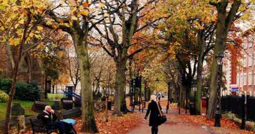 The Top 10 Things To Do And See In Leicester