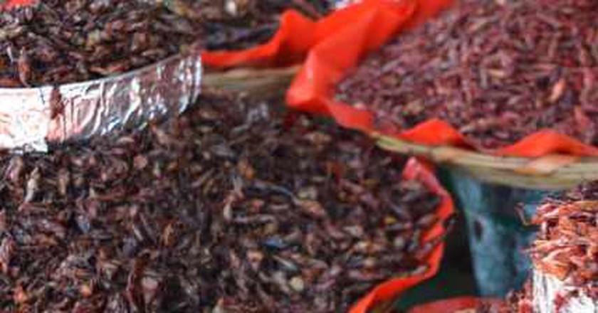 A Gastronomic Celebration In Oaxaca: El Saber Del Sabor