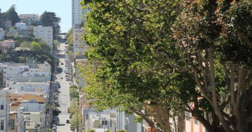 SF Weekday Guide: 11/02/15-11/06/15