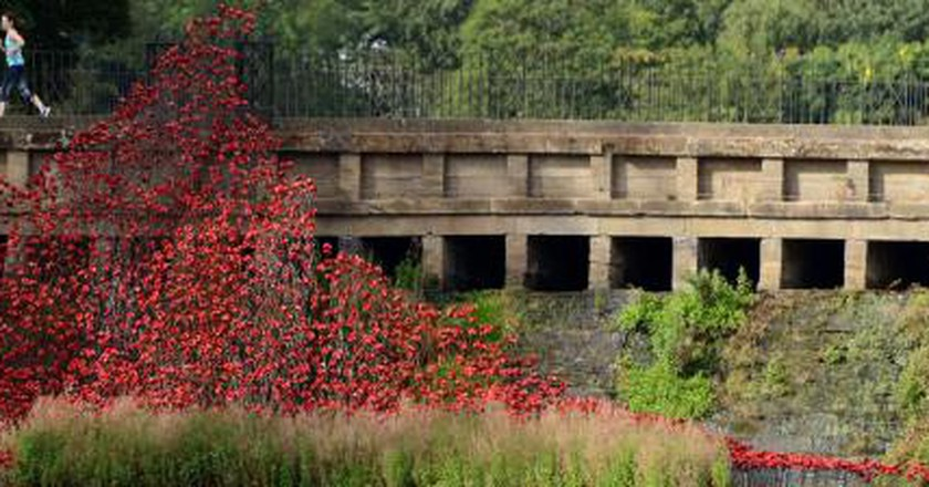 Remembrance Day: Wave At YSP's Historic Lower Lake