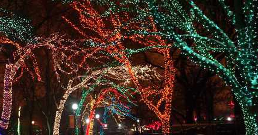 The Best Ways To Celebrate The Holiday Season In Chicago