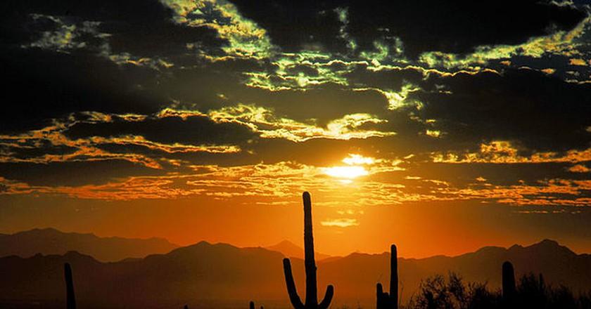 The 10 Best Restaurants In Scottsdale, Arizona