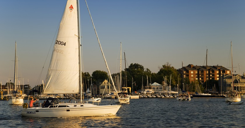 Annapolis Harbor Jeff Weese