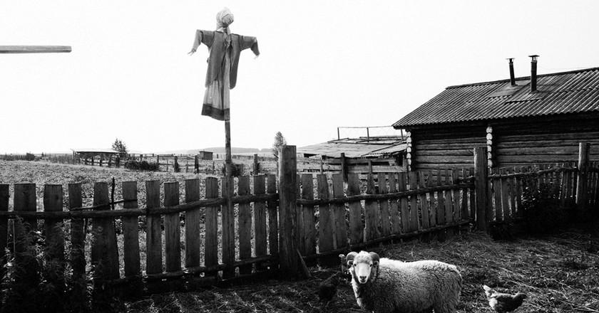 © Sergey Poteryaev