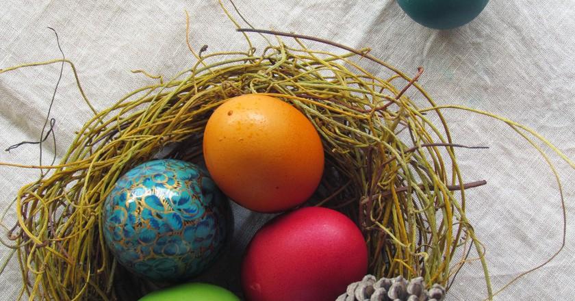 Nest eggs | © Alexandra E Rust/Flickr
