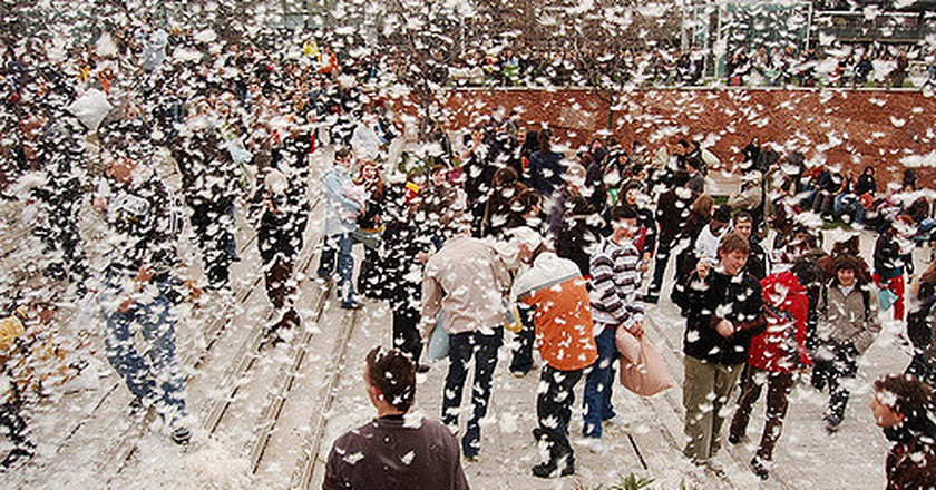 Pillow Fight Day | ©Dávid Kótai/flickr
