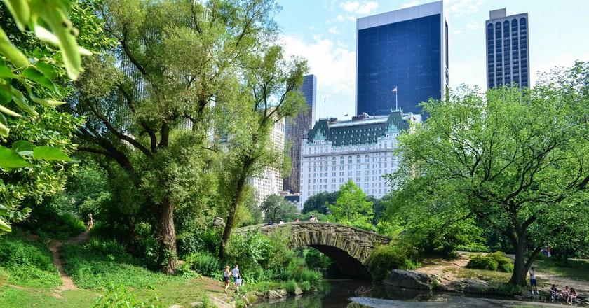 Central Park  © m01229/flickr