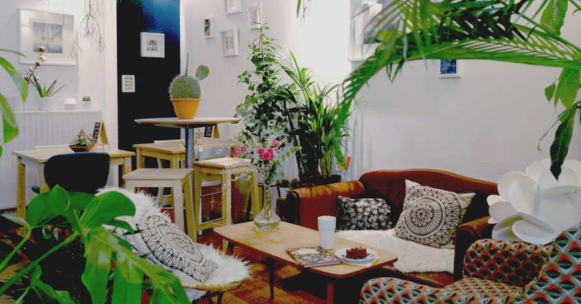 Lounge in a green setting at The Little Green Shop | Courtesy of The Little Green Shop