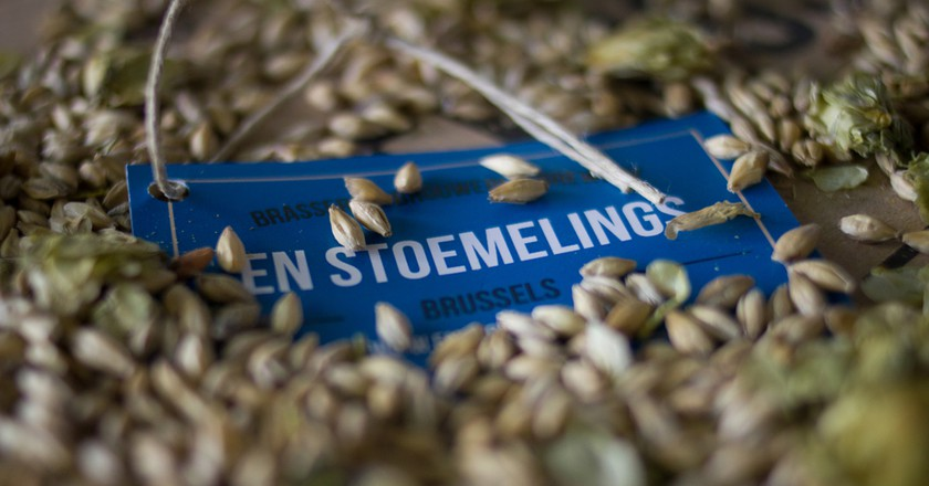 Barley Grains   © En Stoemelings