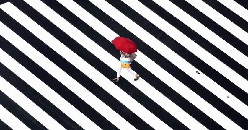 Rain | © Yoshinori Mizutani