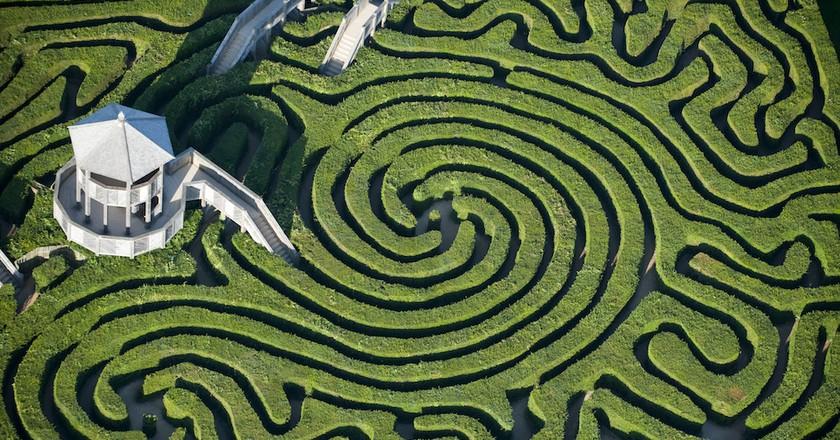 Longleat Maze, Wiltshire   © Jason Hawkes
