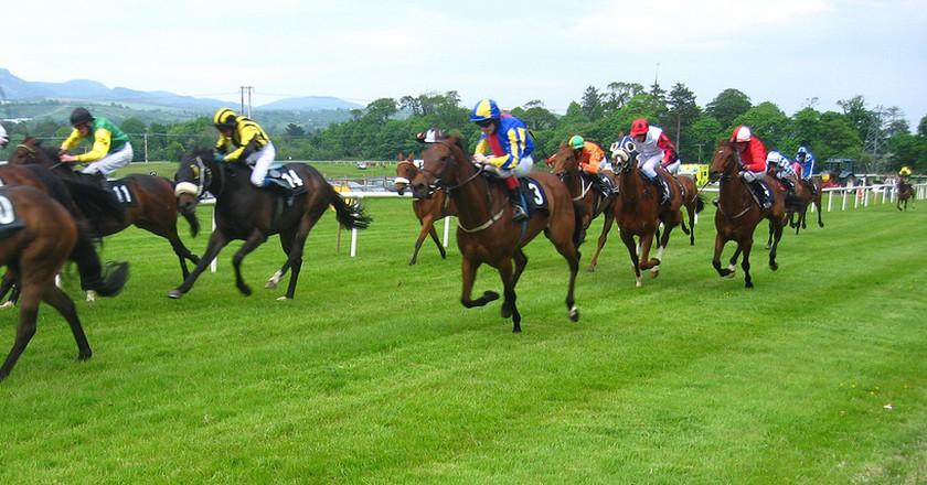 Horse race | ©JohnPickenPhoto / Flickr