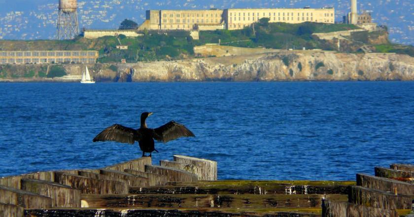 Alcatraz © Dawn Ellner/Flickr