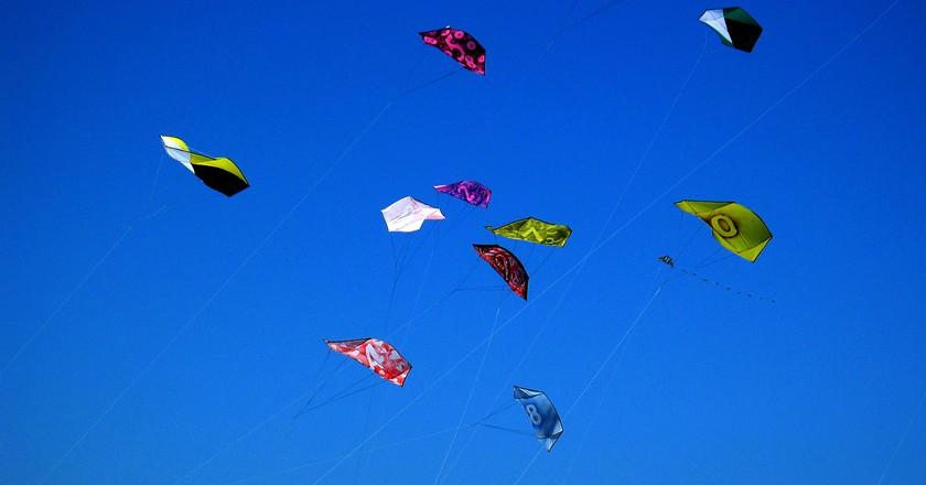 kites rokkaku battles blue red   © Christopher Sessums/Flickr
