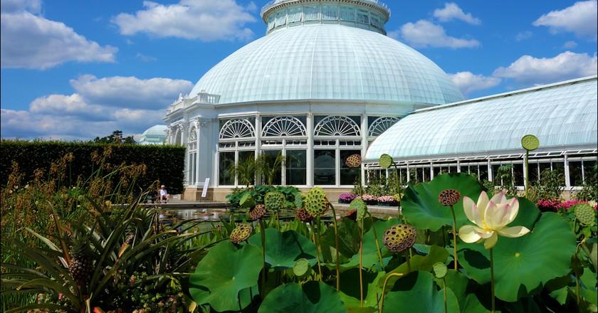 Enid Haupt Conservatory | © Raymond Bucko, SJ/Flickr