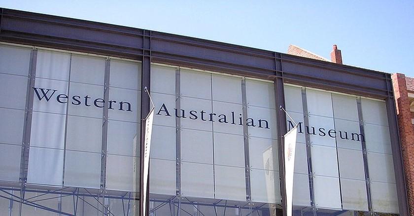 Western Australian Museum, Perth Cultural Centre   © Nachoman-au / WikiCommons