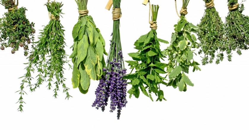 Fresh herbs | © SMARTSign Dictionary/YouTube