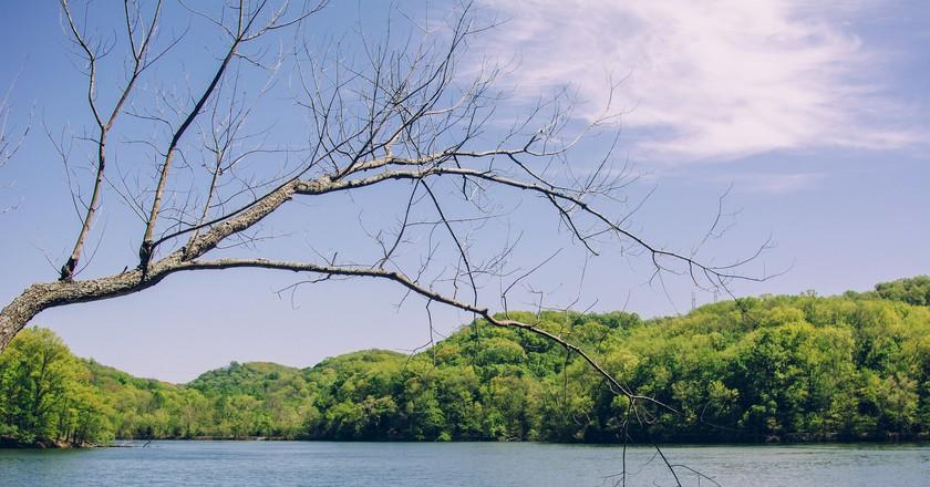 © Radnor Lake. Nashville, TN. 4.14, Mark B./Flickr
