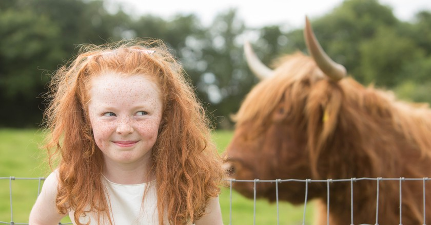 Aoibhe Sheehan at Rumley's Open Farm | © Darragh Kane/Courtesy of the Irish Redhead Convention