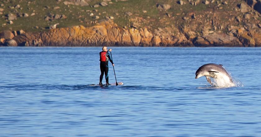 Paddle boarding by Dalkey Island | ©John Fahy/WikiCommons