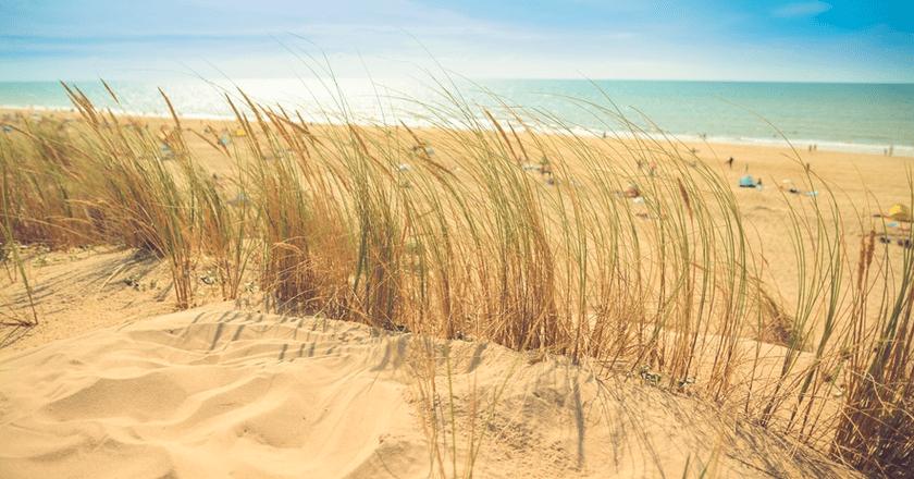 Beach   Public Domain/Pexels