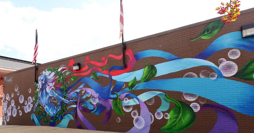 Politically Polarizing: Street Art of Washington, DC