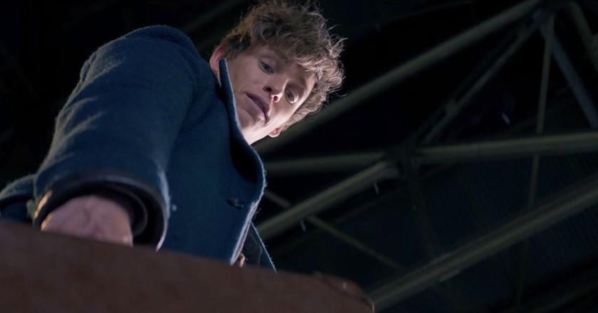 Eddie Redmayne as Newt Scamander in 'Fantastic Beasts And Where To Find Them' | © Warner Bros.
