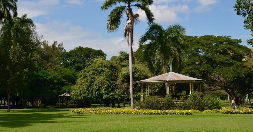 Hope Gardens, Kingston, Jamaica.