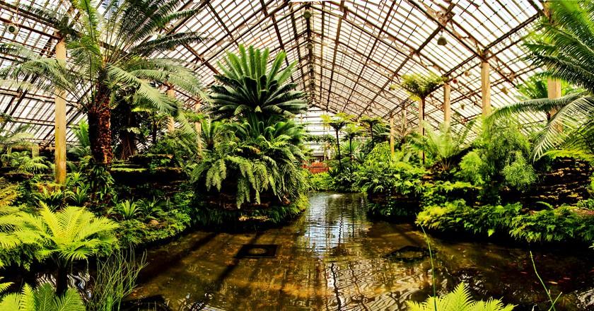Garfield Park Conservatory   © Peterson.jon/WikiCommons