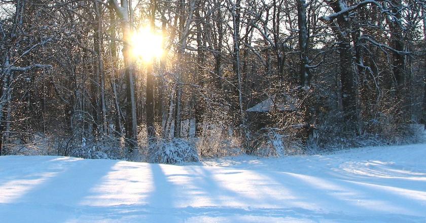 Experience the snowy trails of Weston Ski Track   © Elizabeth Lloyd / Flickr