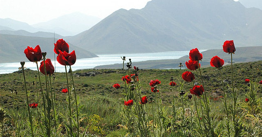 Lar National Park | © Parandco / Wikipedia